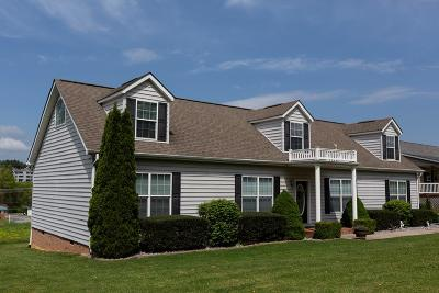 Abingdon Single Family Home For Sale: 235 Glenrochie Dr