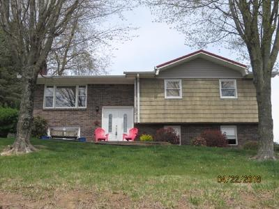 Bristol VA Single Family Home For Sale: $131,000