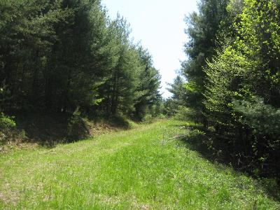 Carroll County, Grayson County Residential Lots & Land For Sale: Tbd Joy Ranch Road