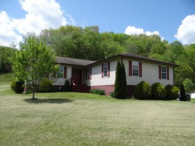 Saltville Single Family Home For Sale: 4222 Tumbling Creek Road