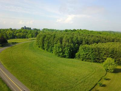 Woodlawn VA Residential Lots & Land For Sale: $139,900
