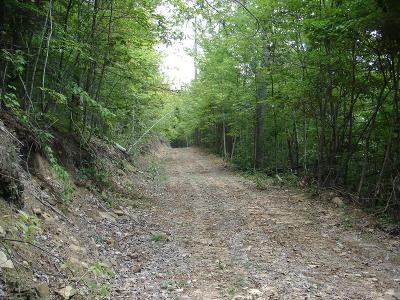 Abingdon Residential Lots & Land For Sale: Tbd North Fork River Rd Lot 18