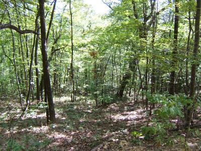 Abingdon Residential Lots & Land For Sale: Tbd North Fork River Rd Lot 19