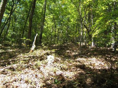 Abingdon Residential Lots & Land For Sale: Tbd North Fork River Rd Lot 20