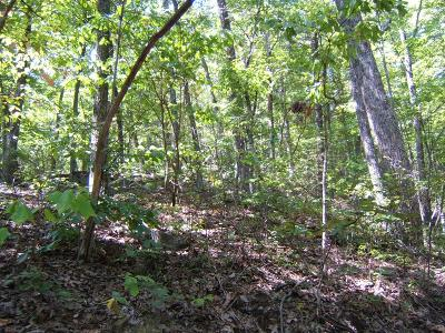 Abingdon Residential Lots & Land For Sale: Tbd North Fork River Rd Lot 23