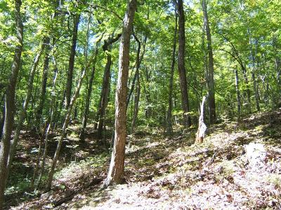 Abingdon Residential Lots & Land For Sale: Tbd North Fork River Rd Lot 26