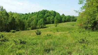 Wytheville Residential Lots & Land For Sale: Tbd Black Lick Rd