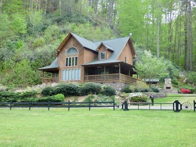 Carroll County, Grayson County Single Family Home For Sale: 3294 Sutphintown Road