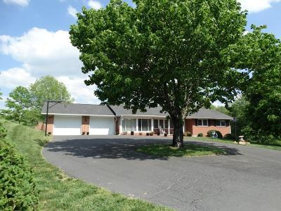 Carroll County Single Family Home For Sale: 6401 Fancy Gap Hwy