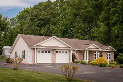 Abingdon VA Single Family Home For Sale: $298,500