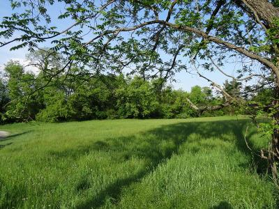 Wytheville Residential Lots & Land For Sale: Tbd Country Lane