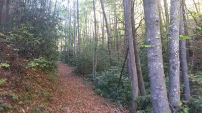 Carroll County, Grayson County Residential Lots & Land For Sale: Tbd Gator Mountain