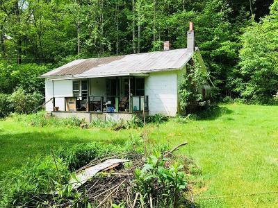 Abingdon VA Single Family Home For Sale: $59,900