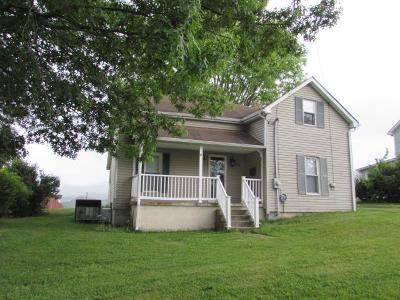 Wytheville Single Family Home For Sale: 665 Union St