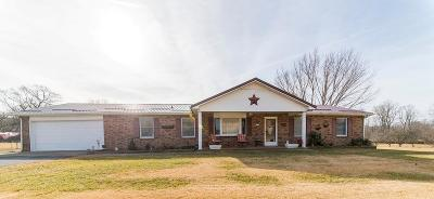 Chilhowie Single Family Home For Sale: 1098 Riverside Road
