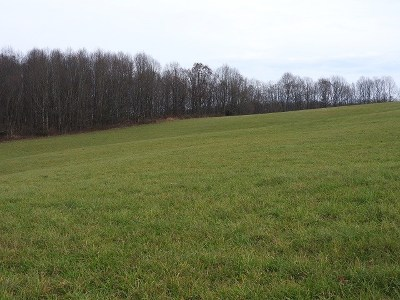 Hillsville VA Residential Lots & Land For Sale: $289,900