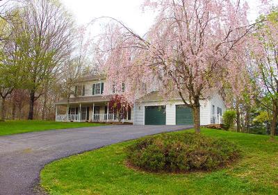 Marion Single Family Home For Sale: 100 John St.