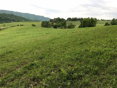 Saltville Residential Lots & Land For Sale: 960 Possum Hollow Road