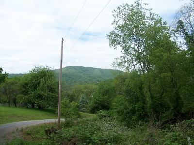 Grayson County Residential Lots & Land For Sale: Tbd Winter Place Lane