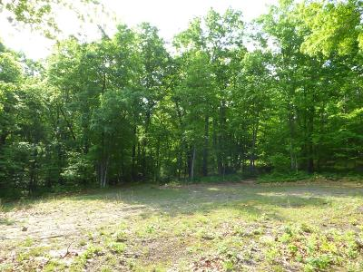Wytheville Residential Lots & Land For Sale: Tbd Barrett Mill Road