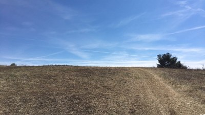 Wytheville Residential Lots & Land For Sale: Tbd Wilkins Lane