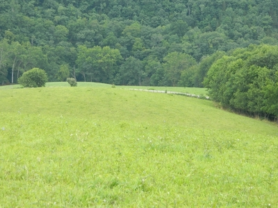 Saltville Residential Lots & Land For Sale: 293 Old Chatham Hill Rd.