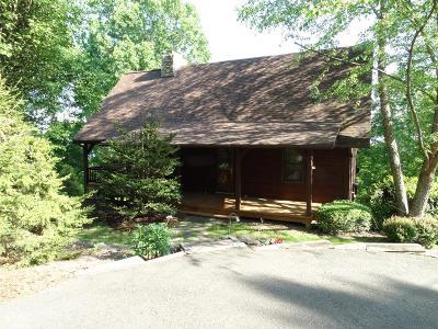Carroll County, Grayson County Single Family Home For Sale: 929 Cascade Trail