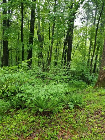 Carroll County, Grayson County Residential Lots & Land For Sale: Tbd Briar Rock Trail