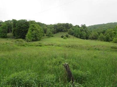 Carroll County, Grayson County Residential Lots & Land For Sale: Tbd Flatridge Road