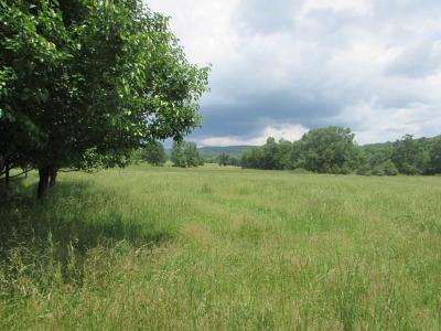 Bland Residential Lots & Land For Sale: 2253 Prices Ridge Rd