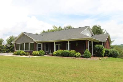 Galax Single Family Home For Sale: 268 Holly Tree Court