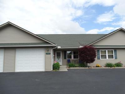 Carroll County Single Family Home For Sale: 169 Fairway Villa