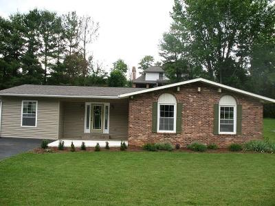 Galax Single Family Home For Sale: 392 Kenbrook Drive