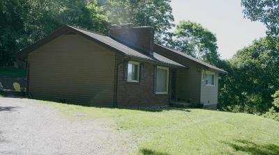 Wythe County Single Family Home For Sale: 530 Ridge Street