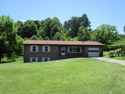 Bristol VA Single Family Home For Sale: $259,000