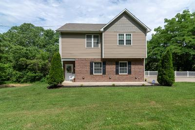 Chilhowie Single Family Home For Sale: 373 River Road