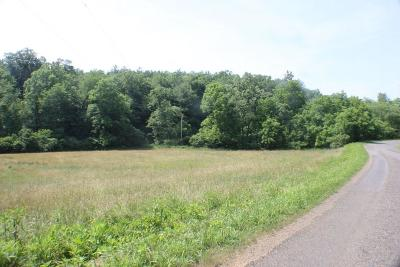 Carroll County, Grayson County Residential Lots & Land For Sale: 113 Parkview