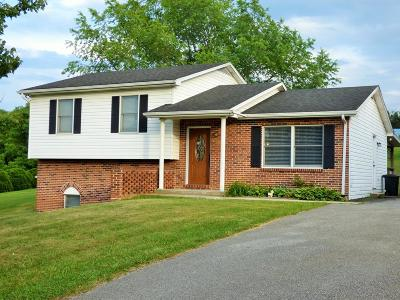 Wythe County Single Family Home For Sale: 173 Sunset View Rd