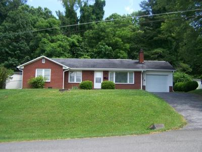 Galax Single Family Home For Sale: 113 Sunset Dr