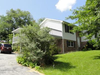Marion Single Family Home For Sale: 513 Virginia Avenue