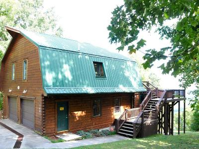 Carroll County, Grayson County Single Family Home For Sale: 780 Starry Nights Drive