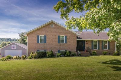 Abingdon VA Single Family Home For Sale: $245,000