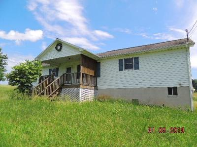 Wythe County Single Family Home For Sale: 175 Wilkins Lane