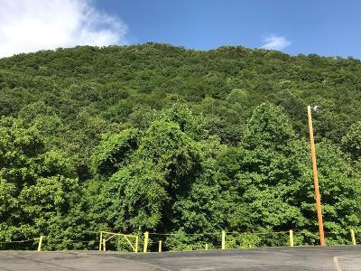 Saltville Residential Lots & Land For Sale: Tbd Allison Gap Rd