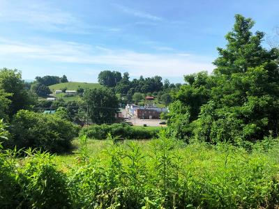 Meadowview Residential Lots & Land For Sale: Tbd Ryan Rd