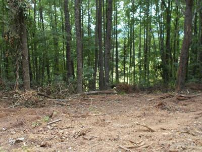 Residential Lots & Land For Sale: Tbd Pine Mountain Dr