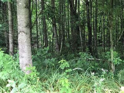 Galax, Woodlawn, Hillsville, Fries Residential Lots & Land For Sale: Woodstock Road
