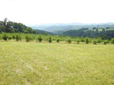Galax Residential Lots & Land For Sale: Tbd Fries Rd.