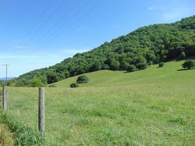 Grayson County Residential Lots & Land For Sale: Tbd Old Bridle Creek Rd.