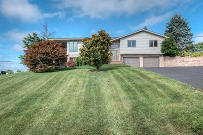 Abingdon Single Family Home For Sale: 317 Beverly Drive